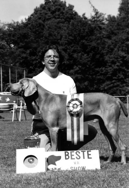 Abel Pingus Sirius van Bekkeman wordt Kampioenschapsclubmatchwinnaar 2003 van de Weimarse staande hond