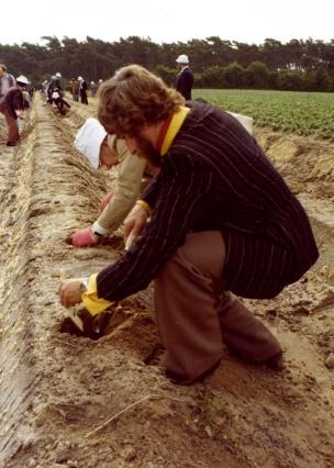 Onze fotograaf Charles hartman en Rudolf Goossens steken vol ijver asperges