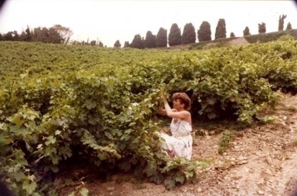 Ine Droogh-Goossens in de wijngaarden van Coulée de Serrant in 1981