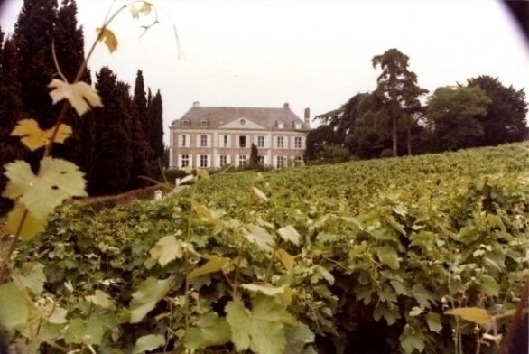 Het landgoed met wijngaarden van Coulée de Serrant