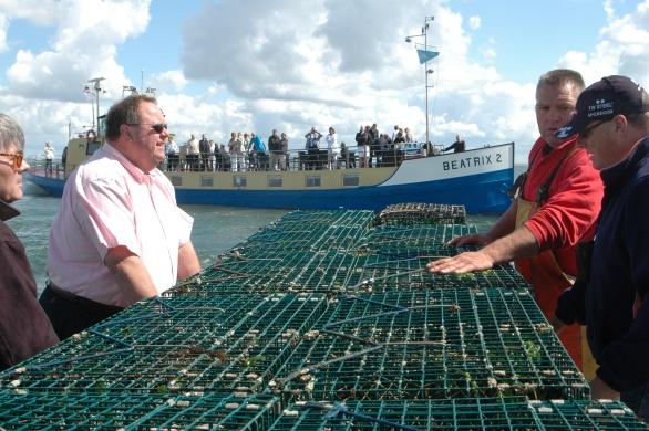 Straks gaan de fuiken weer terug in het water voor de volgende vangst van kreeften