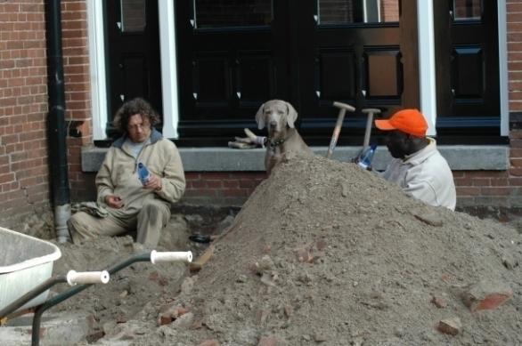 Pingus denkt wat een werk! Ries en Ali pauseren tijdens de aanleg van het nieuwe riool